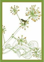 GMM Blumen Grußkarten, Klappkarte mit Fröschen