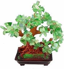 GMMH Feng Shui Glücksbaum 25 cm Geldbaum Bonsai