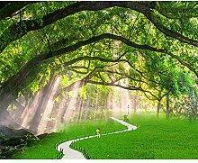 GMYANBZ Baum-Landschaftsfoto-Tapete der Tapeten-3d