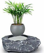 GNB Levitating Air Bonsai Pot, Kreatives Design