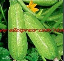 Go Garden Gemüse Bonsais auf home50pcs ne