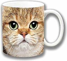 Gold Erwachsene Katzengesicht Blassgrün Augen Britische Kurzhaar Fotodruck Keramik Tee-/ Kaffeetasse Einzigartige Geschenkidee