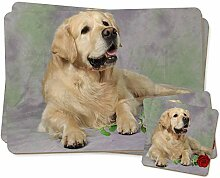 Golden Retriever mit roter Rose Zwillings