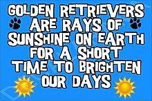 Golden Retriever sind Strahlen Sonne, auf der Erde für kurze Zeit auf unsere Tage Hund–Jumbo Magnet als Geschenk/Geschenk