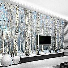 GONGFF 3D Fototapete Birkenwald Schneelandschaft