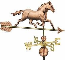 Good Directions Good Richtungen Trabendes Pferd