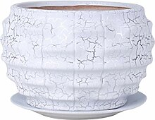 GOPG Keramik Saftig Blumentopf, Indoor/Draußen