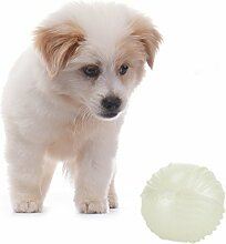 Gorgebuy Spielzeug TPR Hundespielzeug leuchtball