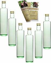 gouveo 24er Set Flasche Dora Lichtgrün 500 ml