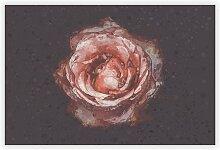 Grafikdruck Pink Tipped Rose Flower Big Box Art
