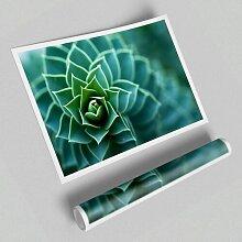 Grafikdruck Wunderschöne Pflanze