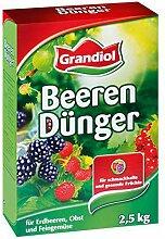 Grandiol® Beerendünger Spezialdünger Beeren