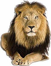 Graz Design 641055_50 Wandsticker Wandtattoo Aufkleber Tiere Löwe Afrika Zoo Savanne Kinderzimmer (Größe=65x50cm)