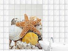 Graz Design 761040_15x20_50 Fliesenaufkleber Fliesen für Küche Für Bad Deko Fliesenbild Seestern mit Muscheln Fliesengröße 15x20cm (Anzahl Fliesen = 3 breit und 4 hoch)