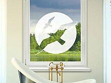 Graz Design 980026_57 Glasdekor Fensterfolie Aufkleber Sichtschutz Badezimmer Möwen WC Bad (Größe=57x57cm)