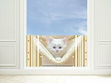 GRAZDesign 991157_80x57 Sichtschutzfolie Katzen - Baby/Hängematte | Glasdekorfolie zur Deko | Blickdichte Fensterfolie (80x57cm)