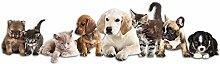 GRAZDesign Deko für Hundezimmer Aufkleber Tiere
