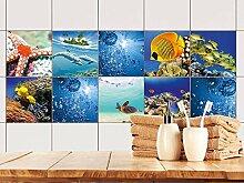 GRAZDesign Fliesenaufkleber Küche Seesterne,