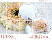 GRAZDesign Fliesenaufkleber Muscheln/Blüte/Sand