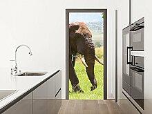 GRAZDesign Fototapete Küchentür - Türfolie