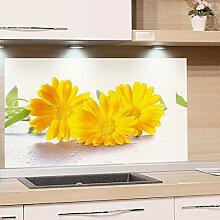GRAZDesign Küchen-Spritzschutz Glas Küchen Herd