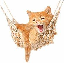 GRAZDesign Wandtattoo Baby Katze, Babykatzen auf