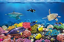 great-art Fototapete Aquarium - 336 x 238 cm