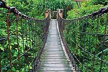 GREAT ART Fototapete Dschungel Hängebrücke 336 x