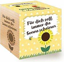 Green Celebrations, Sonnenblume Bio, Holzwürfel