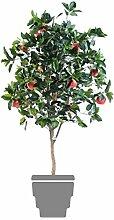 Green Shop 10685–71Apfelbaum grün/rot