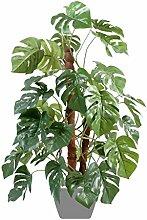 Green shop 1173–71Philoblatt, Pflanzstab Coco Grün 100cm