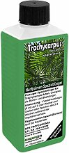 GREEN24 Trachycarpus Dünger für Hanfpalmen