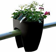 GREENBO GELÄNDER Blumenkasten (6 Pack), Medium,