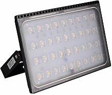 Greencolourful 200W Ultradünnes LED Flutlicht Scheinwerfer Strahler Licht Wasserdichte IP65 LED Wandlampe Fluter SMD2835 220-240V Aluminium + PC, Warmweiß