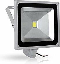 Greenmigo 50W LED Strahler Fluter+Bewegungsmelder