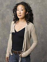 Greys Anatomy Season 13 Poster auf