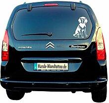 Griechische Bracke Autoaufkleber AT0210 Auto Aufkleber Wohnmobil Wohnwagen von Amberdog® - Das ORIGINAL (30x20cm, schwarz)