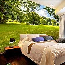 Große Nahtlose Wandverkleidung 3D Wallpaper Wandbild Idyllisch Wohnzimmer Tv Hintergrund Tapete Vlies Schlafzimmer Mural 400Cmx300Cm