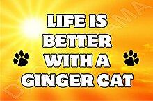 """Großer Magnet mit Aufschrift """"Life Is Better With A Ginger Cat"""" (in englischer Sprache), Geschenk"""
