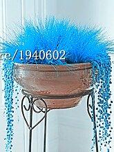 Großer Verkauf 100pcs / bag Dekorative Grassamen blau, grün, rot, rosa, lila azury 6 Farbe Bonsai Grassamen Pflanze für Zuhause vergossen &