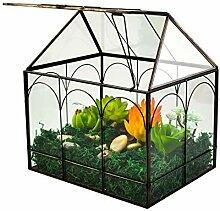 Großes hohes Pflanzen-Terrarium aus Glas –