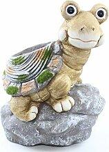 Großes Pflanzgefäß Schildkröte auf einem Stein
