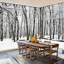 Großes Wandbild Wald Schneelandschaft Tapete