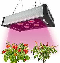 Grow Light - LED Grow Lampe 400W Pflanzenlampe Vollspektrum mit Hochleistungs COB und 5W CREE Chips für Zimmerpflanzen Innen-Gewächshaus Hydroponik Gemüse und Blumen