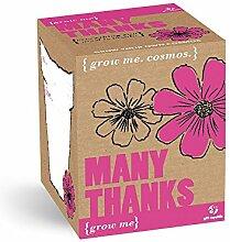 GROW ME Many Thanks - Cosmos Pflanze, Geschenk, Vielen Dank