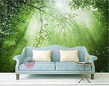 Grün Fototapete 3D 250Cmx175Cm Wald Sonnenlicht