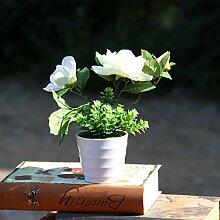 Grün und Blau - Grüne Pflanzen Eingetopft und