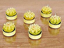 GRÜNE WASSERLILIEN Teelichter Set - 6 Stück Deko Kerze, Kerze, Geschenkidee