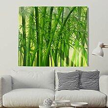 Grüner Bambus Wald Wandteppich Sonnenlicht Durch