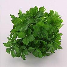 GSYLOL künstliche Pflanzen Glück Gras fünf